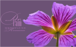 Use a vibrator- Dr. Pam Purple flower-Logo